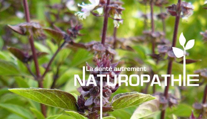 Naturopathie – Réflexologie plantaire