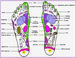 carte_pieds_reflexoplantaire